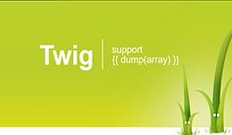 Twig debug (support dump)
