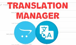 Translation Manager