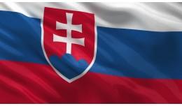 Slovenčina v3.1.0.0