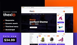 THEXIO multipurpose theme + configurator and int..