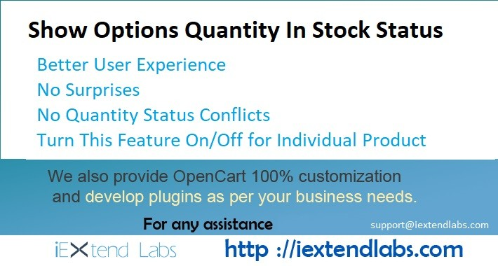 Options Available Quantity On Product Page Availability Status