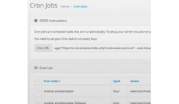 Cron Jobs for Opencart 3.0.* and 2.3.*