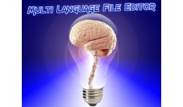 Multi Language File Editor with Caching Control ..