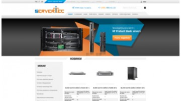 online store selling server and telecommunications equipment