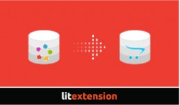 LitExtension: Litecart to OpenCart Migration