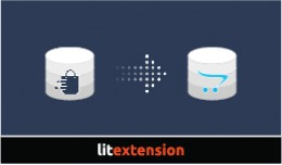 LitExtension: Storeden to OpenCart Migration