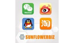 China Social Login