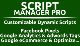 Script Manager Pro (Google, Facebook & Custom)