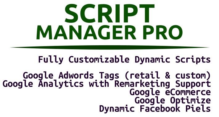 Script Manager Pro (Google, Facebook & Custom)