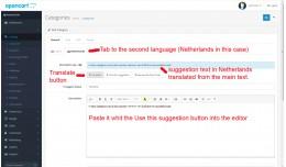 Multi language translate suggestion