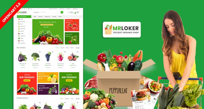 Mrloker Organic and grocery Theme (Free Installation)