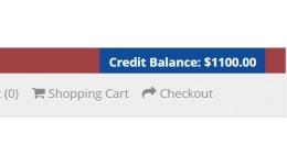 Credit Balance in Store Header