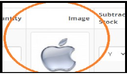 Option Images Opencart