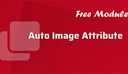 Auto Image Attribute