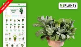 MePlantly Plant & Home Plant Ecommrce Websit..