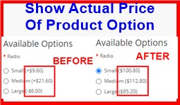Show Actual Price Of Product Option