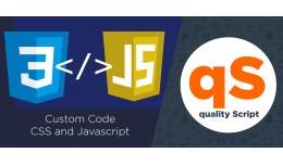 Custom Code CSS and Javascript