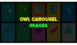 OWL Carousel Images