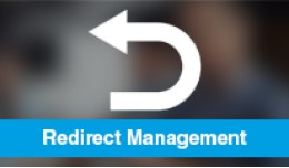 Easy Redirect Management (SEO Ultimate)