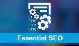 Essential SEO Manager (SEO Ultimate)