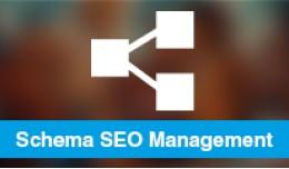 Schema SEO - schema.org Machine Readable SEO (SE..