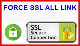 FORCE SSL ALL LINK