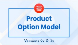 Product Option Model