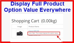 Display Full Product Option Value Everywhere