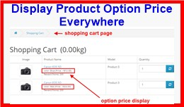 Display Product Option Price Everywhere