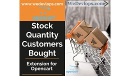 Stock Quantity and Bought Customers counting