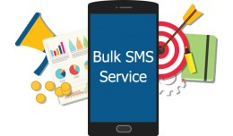 Bulk and Notification SMS - UAE