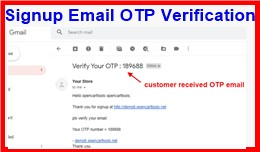 Signup Email OTP Verification