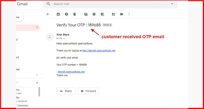 Signup Email OTP Verification