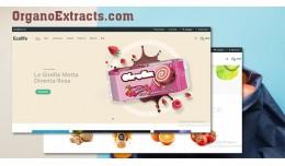 Organic 1 - vegetables and fruits shop responsiv..