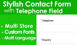 Stylish Contact us Form Pro with TELEPHONE [ Wor..