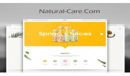 Organic & Natural Store-2 responsive opencar..
