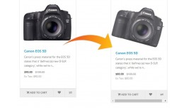 Thumbnail Image Rotate On Hover