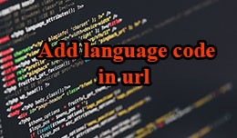 Add Language Code In Url