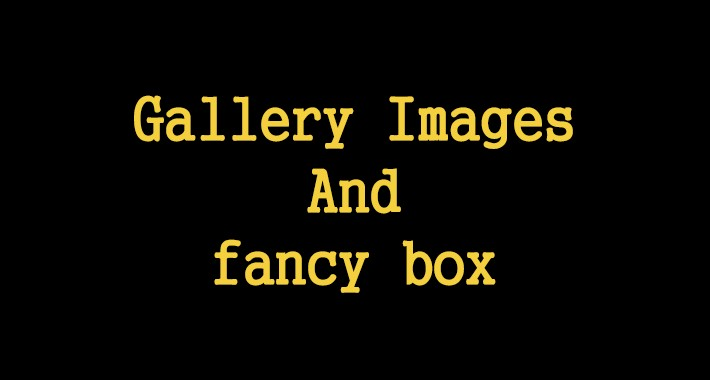 Gallery Images And Fancy box