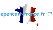All French Language Pack - v1.4.7 to v1.5.6.4