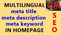 Multilingual SEO meta tags in homepage