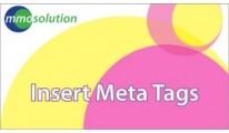 Insert Meta Tags
